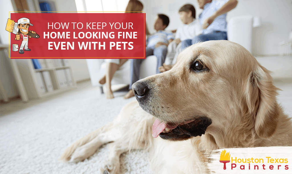 How to Keep Your Home Looking Fine Even With Pets